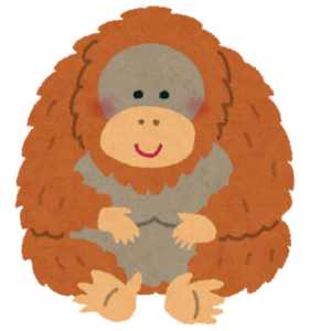 animal_orangutan