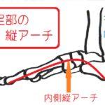 【中足骨疲労骨折】長引く足の甲から前側の痛みに要注意!